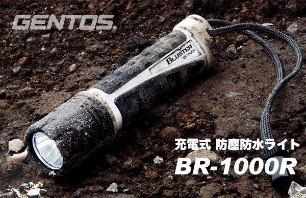 BR1000R-1