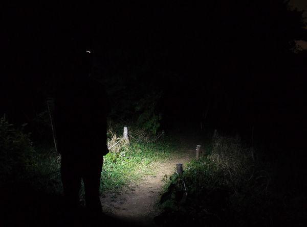 Trail_Runner1