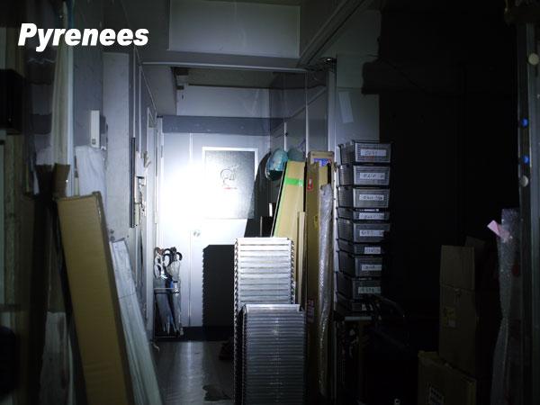 pyrenees3