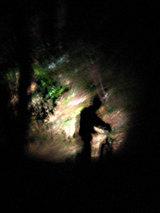 ライトの照らすところ意外は真っ暗