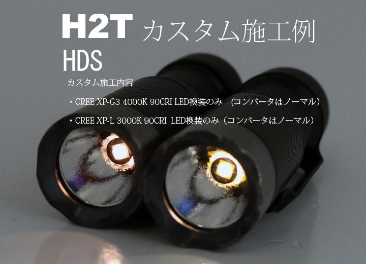 HDS-1