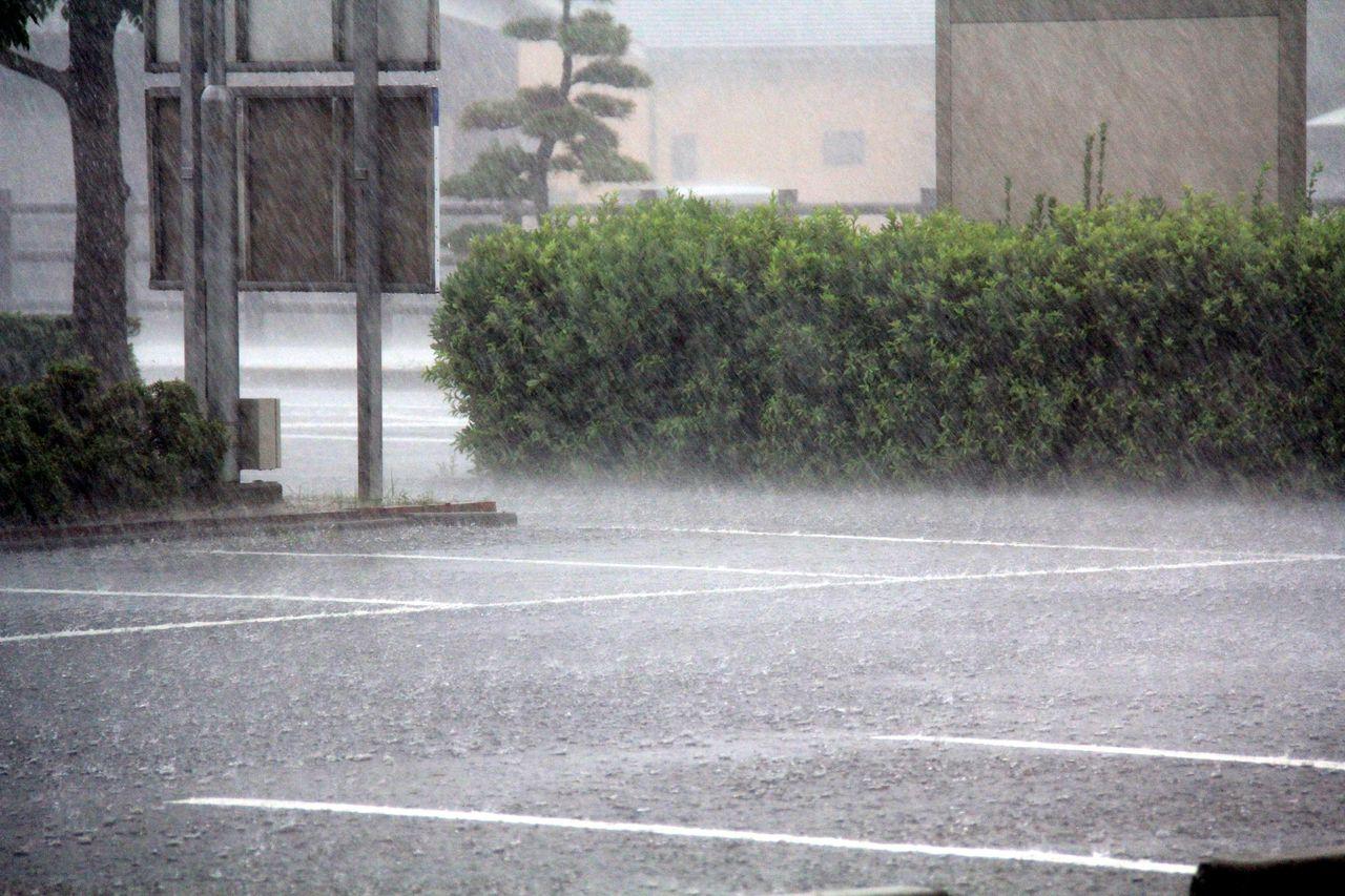 ゲリラ豪雨 かっこいいパパと黒柴わんこのブログ : ゲリラ豪雨! かっこいいパパと黒柴わんこのブ