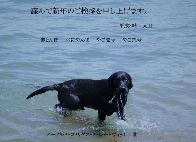 H30年賀ー2 - コピー