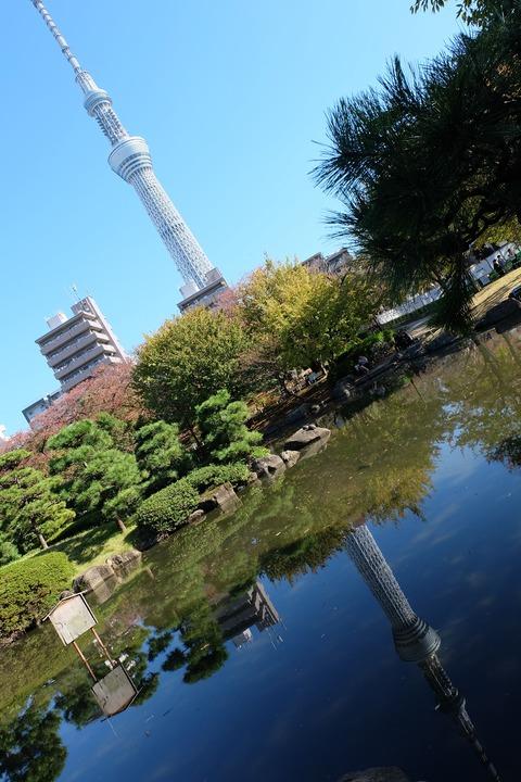 20191116_隅田公園_鏡写_東京スカイツリー