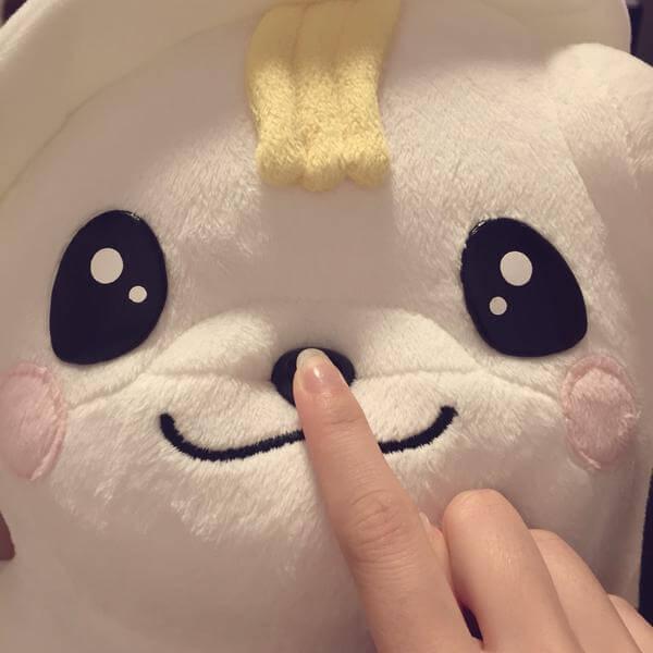 【AKB48】渡辺麻友「さのまるがうちに来た~かわいいよう」【まゆゆ】