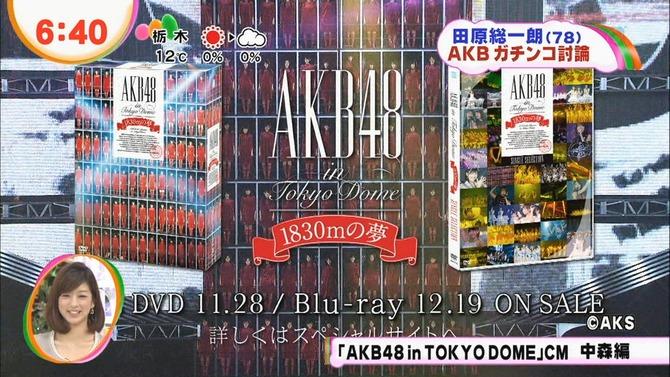 fat1353460520504[1]