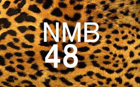 nmb48_logo_20201003