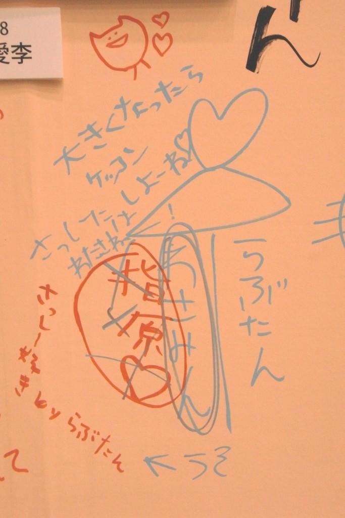 日本未来の党 (政治団体)の画像 p1_21
