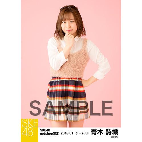 SKE48 2018年1月度 net shop限定個別生写真「ビスチェ」1月13日販売開始!