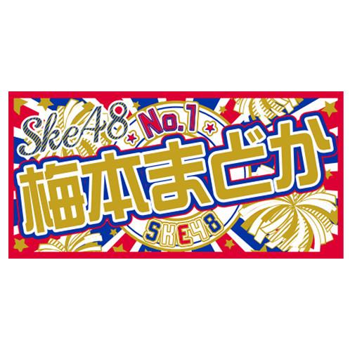 SK-132-1509-12197_p01_500