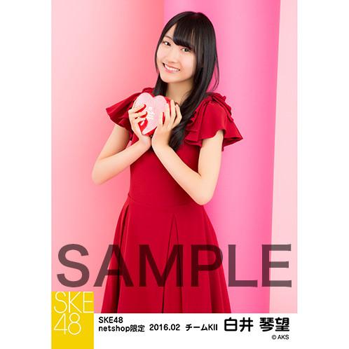 SK-126-1602-16031_p02_500