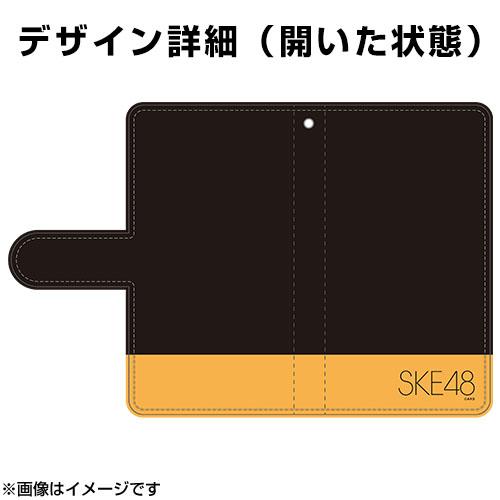 SK-147-1808-44143_p02_500