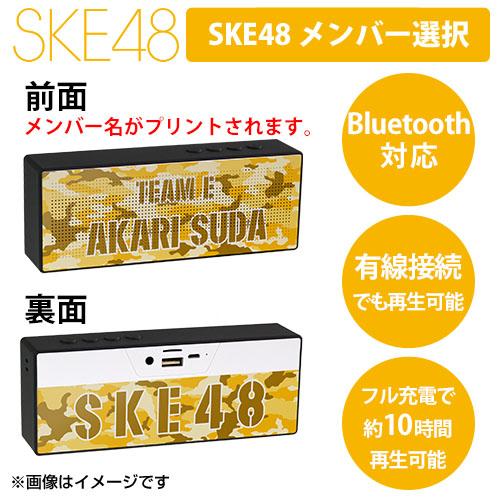 SK-147-1807-43466_p01_500