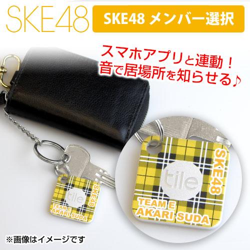 SK-147-1810-47118_p01_500