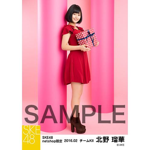 SK-126-1602-16030_p05_500