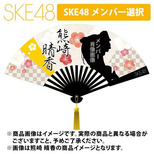 SK-138-1712-37691_p01_500