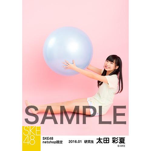 SK-126-1601-15328_p03_500