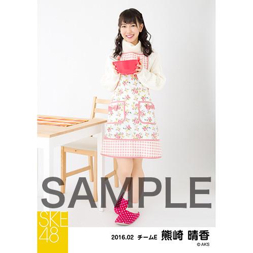 SK-126-1602-15980_p04_500