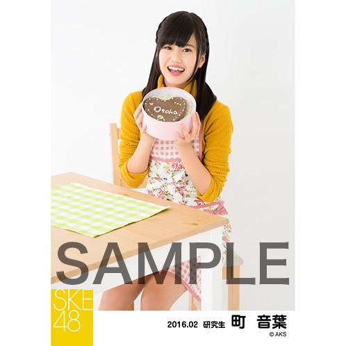 SK-126-1602-15999_p04_500