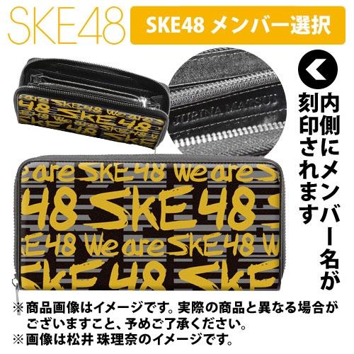 SK-147-1704-30922_p01_500