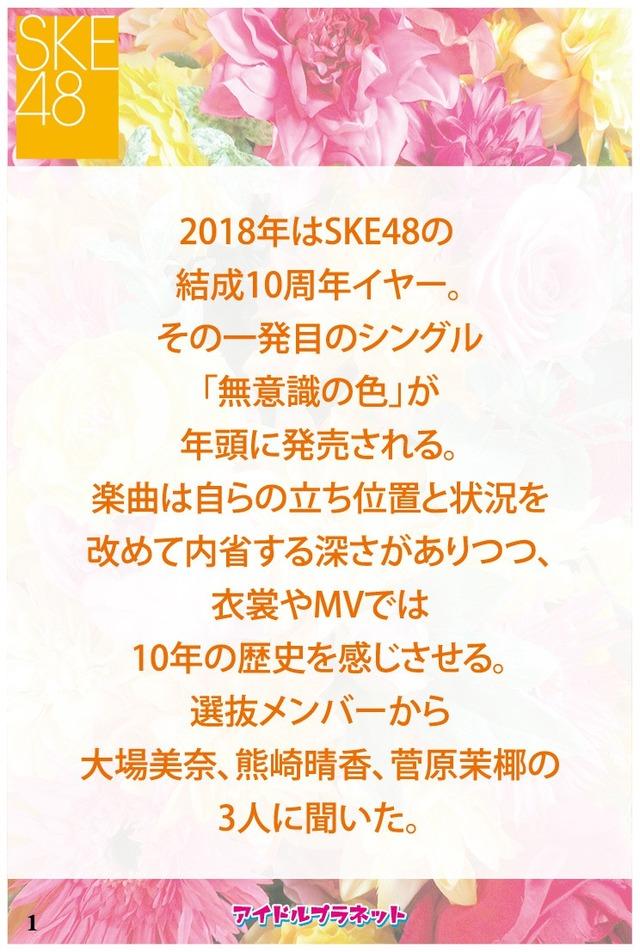 SKE_Book_OL-02