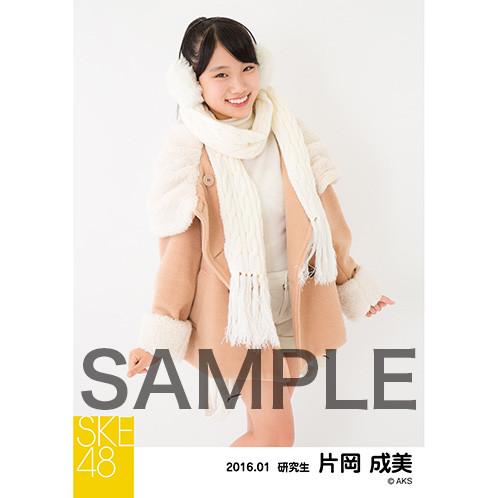 SK-126-1601-15261_p03_500