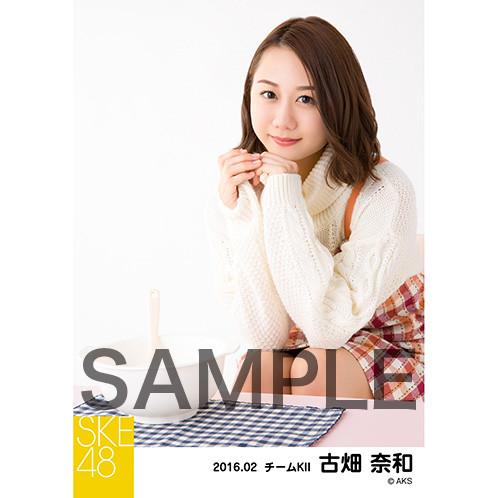 SK-126-1602-15971_p03_500