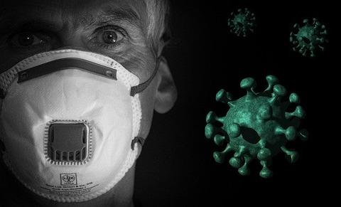 coronavirus-4950230_640
