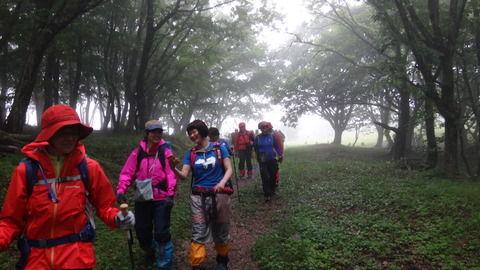 47歳女性「スマホの地図アプリあるから登山余裕っしょ」→ 結果wwwwwwwwの画像