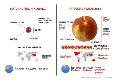 artificial-natural-peach2
