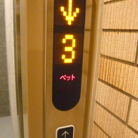 elevator_05