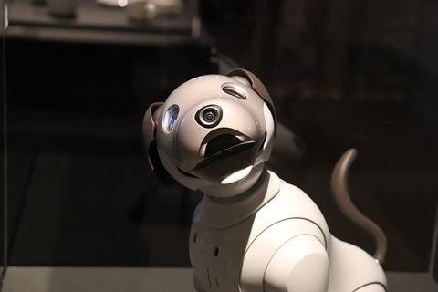 robot-3947585_640