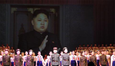 north-korea-case