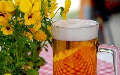 beer-3378136_640