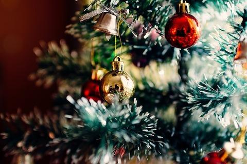 christmas-tree-1149619_640