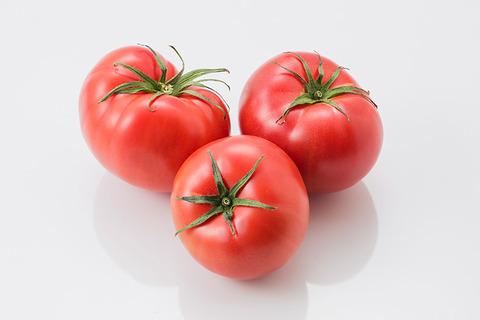 mitani_tomato_scene