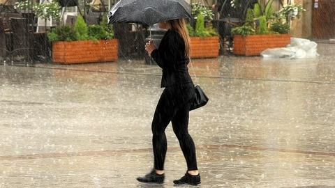 rain-3529738_640