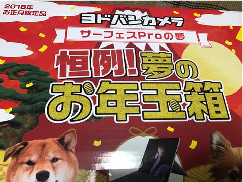 kaminomiya_t-img601x451-1514776014kgoakj3307