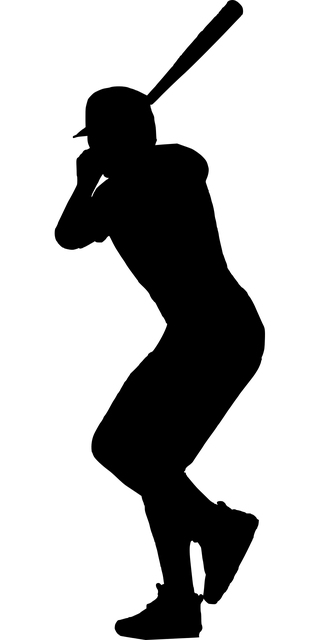 silhouette-3134466_640