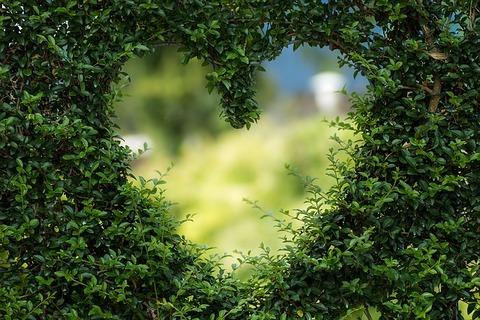 【悲報】ワイ、どうぶつの森住人にガチで恋をした結果wwwww