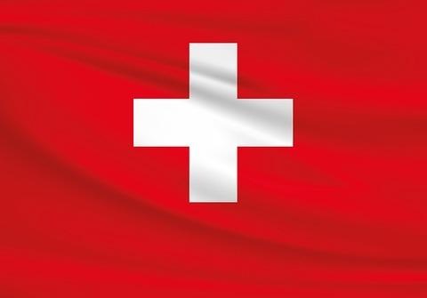 【仰天】スイスの変態紳士さん、税関に完全勝利するwwwww(画像あり)
