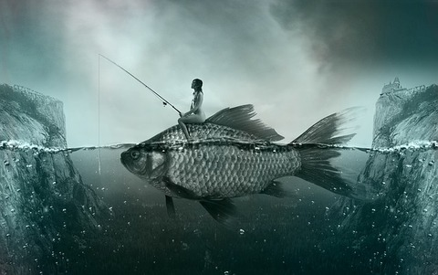 fish-1372923_640