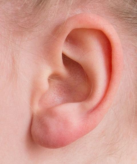 ear-2372090_640