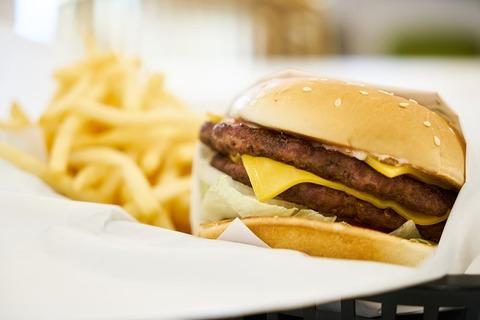 burger-3783179_640