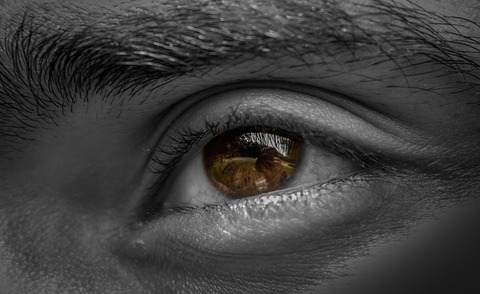 eyes-2606957_640