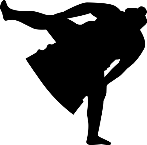 sumo-4301136_640