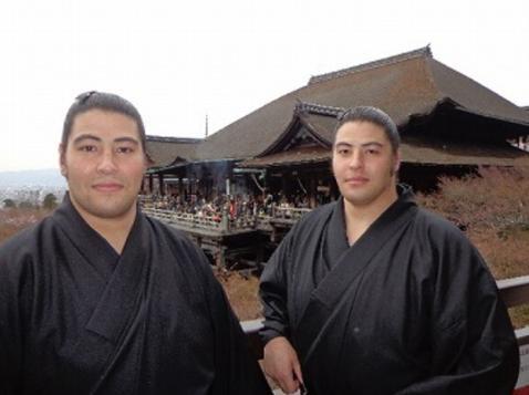 大相撲総選挙2017イケメン力士藤の海と藤の花