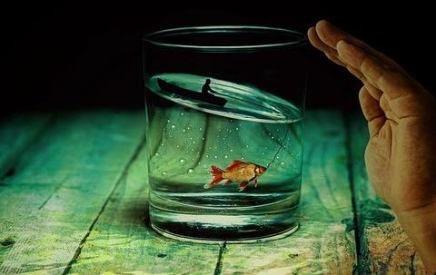 water-glass-2542790_640