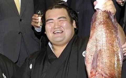 kotoshogiku-kyodo