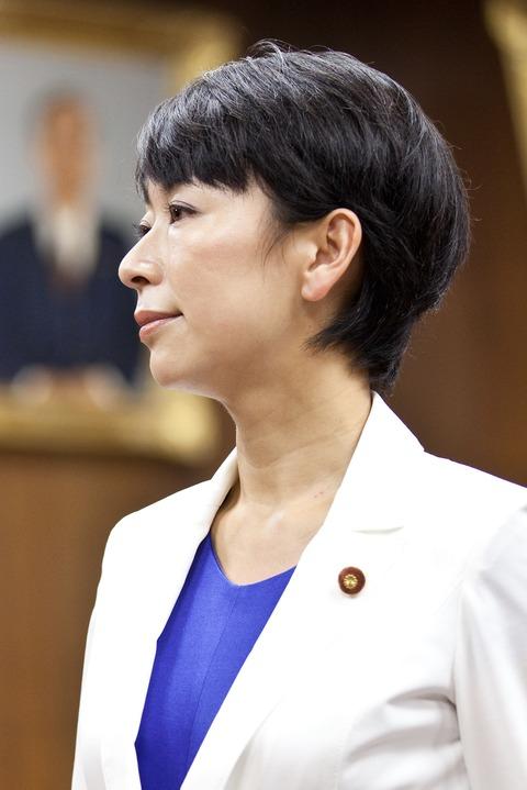 衆議院議員山尾志桜里-trimming